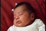 Usai Menembak, Pelaku Culik Bayi Korban