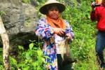 Warni memerlihatkan ulat jati hasil tangkapan dengan suaminya, Yudianto. Ulat-ulat itu bisa diolah menjadi lauk sebagai pendamping nasi. Jumat (9/1/2015). (JIBI/Harian Jogja/David Kurniawan)
