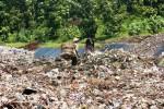 Dua orang pemulung sedang mencari sampah plastik di TPAS Wukirsari. Mayoritas masyarakat di sekitar lokasi mengeluhkan keberadaan tempat itu karena menimbulkan bau pencemaran lingkungan. Foto diambil Sabtu (9/1/2015). (JIBI/Harian Jogja/David Kurniawan)