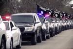 Deretan mobil patroli ISIS (Dailymail)