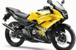 Kawasaki Ninja 150 RR (Kawasaki.com)
