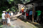 Warga menyingkirkan pohon jati yagn tumbang menimpa rumah Hardo Narimo, warga Dukuh Geneng, Desa Jambakan, Bayat, Kamis (12/2/2015). Angin kencang menerjang wilayah Bayat pada Rabu (11/2/2015) menyebabkan tiga rumah warga rusak tertimpa pohon tumbang. (Taufiq Sidik/JIBI/Solopos)