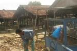 Warga dan pegawai Pasar Tradisional Girimarto bekerja bakti membersihkan puing-puing los yang ambruk akibat rapuh dan ditiup angin. Foto diambil, Selasa (24/2/2015). (Trianto Hery Suryono/JIBI/Solopos)