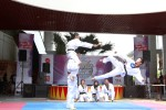 Mahameru Taekwondo sedang menampilkan gerakan bela diri pada acara Community Battle di The Park Solo Baru, Sukoharjo, beberapa waktu lalu. JIBI/Solopos/Ivanovich Aldino