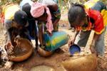 Anak-anak Mali yang dipekerjakan di pertambangan emas (truth11.com)