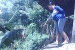 Warga RT 001 dukuh Sumber, Desa Singopadu, Kanti Lestari, menunjukkan kondisi rumahnya yang hanya berjarak ratusan sentimeter dari tebing Sungai Mungkung, Sabtu (28/2/2015). (Abdul Jalil/JIBI/Solopos)