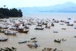 PERIKANAN TULUNGAGUNG : Nelayan Keluhkan Paceklik Ikan Tahun Ini