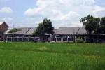 Tiap Tahun, 700.000 Ha Lahan Pertanian Dikonversi Jadi Rumah