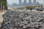Lele tumpah di jalanan wilayah Guizhou Tiongkok