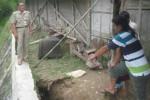 Warga menunjukkan lubang di tanah antara talut dengan rumah warga Desa Wiro, Bayat, Senin (9/3/2015). Tanah di antara talut dan rumah warga tergerus air sungai membuat kedua bangunan rawan ambrol. (Taufiq Sidik Prakoso/JIBI/Solopos)