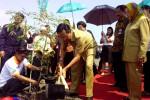 Gubernur DIY, Sri Sultan Hamengku Buwono X menanam pohon di Dusun Ngepet, Kelurahan Srigading, Kecamatan Sanden Bantul, Senin (31/3/2015). (JIBI/Harian Jogja/Bernadheta Dian Saraswati)