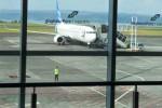 KISAH UNIK : Pesawat Singapore Airlines Mendarat Darurat di Denpasar Gara-Gara Kentut Domba