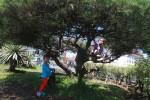 Bermain di Taman Kota (JIBI/Harian Jogja/Desi Suryanto)