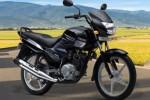 Desain Yamaha Saluto akan mirip dengan Yamaha YBR125 . (Rushlane.com)