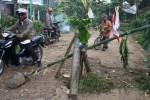 Jalan rusak Malang dtanami pohon pisang, Senin (27/4/2015). (JIBI/Solopos/Antara/Ari Bowo Sucipto)