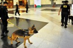 Lokasi Peringatan Konferensi Asia Afrika di Indonesia 2015, Jakarta Convention Center (JCC), Minggu (19/4/2015), diendus anjing. (JIBI/Solopos/Antara/Yudhi Mahatma)