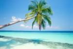 Pulau Seribu (lintaspulauseribu.com)