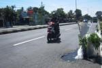 Jalan berlubang di jalur Solo-Boyolali tepatnya di Desa Randusari, Kecamatan Teras cukup membahayakan pengendara. Untuk mencegah kecelakaan, warga sekitar menanam pohon di lubang tersebut sebagai penanda. Foto diambil Kamis (9/4/2015). (Muhammad Irsyam Faiz/JIBI/Solopos)