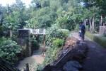 Perangkat Desa Kalimacan, Kalijambe, Sragen, mengecek tebing Sungai Malangan di perbatasan Dukung Plosorejo dan Dukuh Malangan, yang ambrol, Selasa (28/4/2015). (Istimewa)