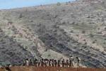 KRISIS IRAK : Perdana Menteri: ISIS Harus Menyerah atau Mati
