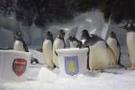 Penguin Ginny Prediksi Aston Villa Juara (Express.co.uk)
