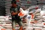 Penataan stok beras di Gudang Bulog Sub Divisi Regional Malang-Pasuruan, Selasa (19/5/2015). (JIBI/Solopos/Antara/Ari Bowo Sucipto)