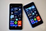Lumia 640 XL dan Lumia 640 (The Verge)