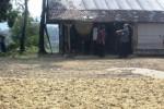 Petugas Satpol PP bersama tim gabungan Pemkab Wonogiri menutup pabrik pengolahan pakan ternak di Desa Sendang, Wonogiri, Rabu (27/5/2015). (Muhammad Ismail/JIBI/Solopos)