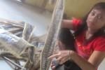 Fransiska, 22, anak Waluyo, sang pemilik usaha jula beli ular sedang menunjukkan sejumlah contoh kulit ular yang telah selesai dikeringkan, Sabtu (23/5/2015) siang. (Kharisma Dita/JIBI/solopos)