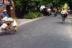 Perempuan mengayuh sepeda melintas di Jl. Udan Riris II, Kelurahan Tlogosari Kulon, Kecamatan Pedurungan, Kota Semarang, yang sudah mulus, Rabu (27/5/2015). Perbaikan jalan tersebut berawal dari usulan warga melalui Musrenbang. (Insetyonoto/JIBI/Solopos)