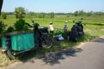 Sejumlah sepeda motor milik petani Desa Gunung, Kecamatan Simo, Boyolali, Sabtu (9/5/2015) diparkir di tepi sawah. Petani Desa Gunung resah karena marak pencurian sepeda motor di area persawahan. (JIBI/Solopos/Hijriyah Al Wakhidah)