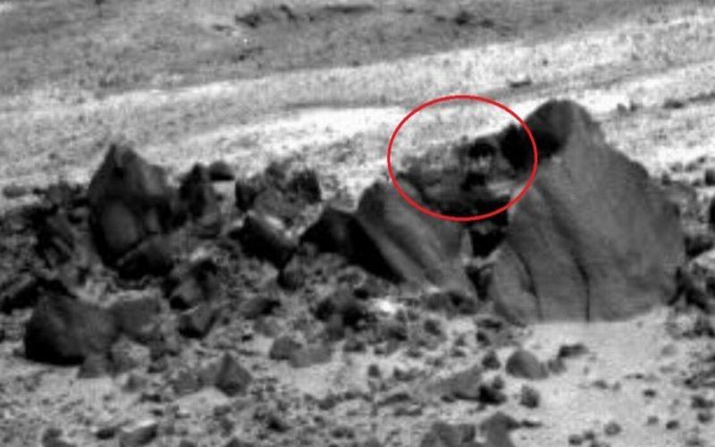 Foto-foto yang diambil NASA di Planet Mars (Okezone/IB Times)