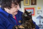 Kucing Tiffany Two dan pemiliknya Sharron Voorhees (istimewa)
