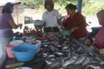 Warga membeli ikan segar yang dijual seorang pedagang di dekat Waduk Gajah Mungkur (WGM) wilayah Kelurahan Giripurwo, Wonogiri, Minggu (28/6/2015). (Muhammad Ismail/JIBI/Solopos)