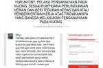 Petisi mengecam Ony tentang aksinya menyiksa kucing (Istimewa/Change.org)