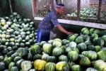 Pedagang blewah Pasar Gadang, Malang, Jumat (3/7/2015). (JIBI/Solopos/Antara/Ari Bowo Sucipto)