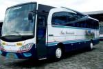 Ilustrasi bus angkutan umum (Safaridharmaraya.com)