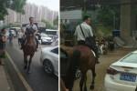 Pria menaiki kuda untuk berangkat kerja (Shanghaiist.com)