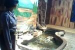 Petugas dari Polsek Lendah Kulonprogo menunjukkan kolam ikan tempat terceburnya bayi berusia tujuh bulan enam hari di Dusun Jatirejo, Desa Jatirejo, Kecamatan Lendah, Kulonprogo, Rabu (29/7/2015). (JIBI/Harian Jogja/Rima Sekarani I.N)