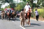 Iring-iringan rombongan pasangan Subardi TS-Wahyu Purwanto saat akan mendaftar di KPU Gunungkidul, Selasa (28/7/2015). (Harian Jogja-David Kurniawan)
