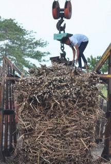 Aktivitas Pabrik Gula (PG) Pagotan, Madiun, Selasa (4/8/2015). (JIBI/Solopos/Antara/Fikri Yusuf)