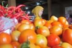 HARGA SAYURAN BOYOLALI : Harga Tomat Anjlok, Brokoli Melambung