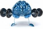 Ilustrasi otak sehat (JIBI/Dok)