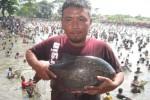 Yanto, 40, warga DUkuh Gejakan, Desa Gemblegan, Kalikotes menunjukkan ikan hasil tangkapannya saat digelar Lebaran Ikan di kolam desa setempat, Minggu (30/8). Dalam acara itu sebanyak 5 kuintal ikan ditebar di kolam seluas 1 hektare. (JIBI/Solopos/Taufiq Sidik Prakoso)