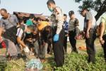 PEMBUNUHAN SRAGEN : Mayat Wanita Penuh Luka Ditemukan Terkapar di Pinggir Sawah