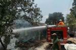 KEBAKARAN SRAGEN : Ditinggal Jemput Anak, Rumah Warga Tanon Ludes Terbakar