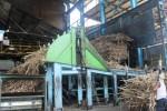 PTPN IX Akui 10.000 Ton Gula Belum Terserap Bulog