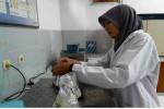 Mahasiswa Farmasi Universitas Gajah Mada (UGM), Layung Sekar Sih Wikanthi saat melakukan proses ekstraksi pada jamur tiram di Laboratorium Farmasi UGM belum lama ini. (JIBI/Harian Jogja/dok. UGM)