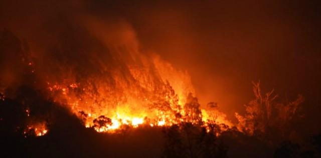 Api membakar hutan di kawasan Cemoro Sewu, Magetan, Jawa Timur, Senin (26/10/2015) dini hari. (JIBI/Solopos/Antara/Siswowidodo)