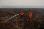Personel pemadam kebakaran Manggala Agni memadamkan kebakaran di hutan Kawasan Suaka Margasatwa Kerumutan, Kabupaten Pelalawan, Riau, Rabu (28/10/2015). (JIBI/Solopos/Antara/FB Anggoro)